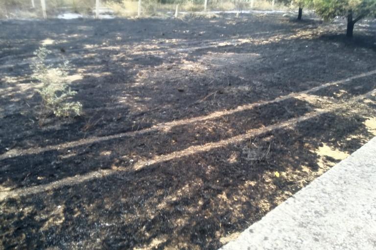 Incendio in una campagna in zona Seminario