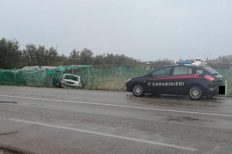 Auto fuori strada sulla provinciale Bisceglie-Andrisa