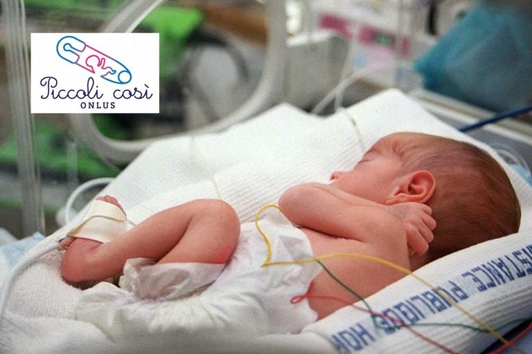 Ecco Piccoli Così, l'associazione che supporta i genitori dei neonati prematuri