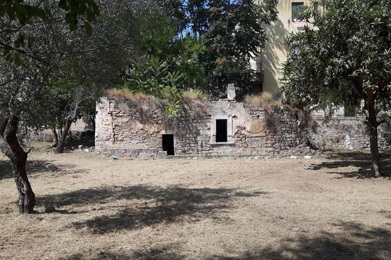 Orto Schinosa