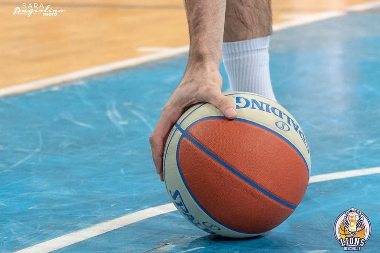 Pallone da basket. <span>Foto Sara Angiolino</span>