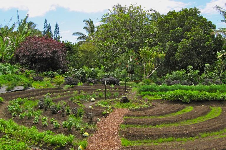 Esempio di permacultura