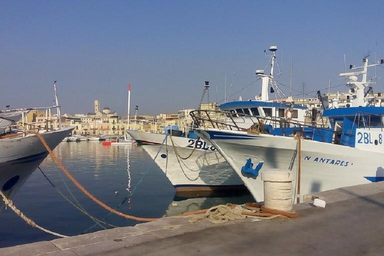 Pescherecci attraccati al porto di Bisceglie