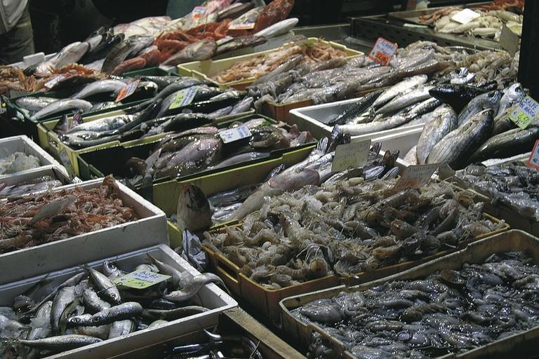 Pesce (repertorio)