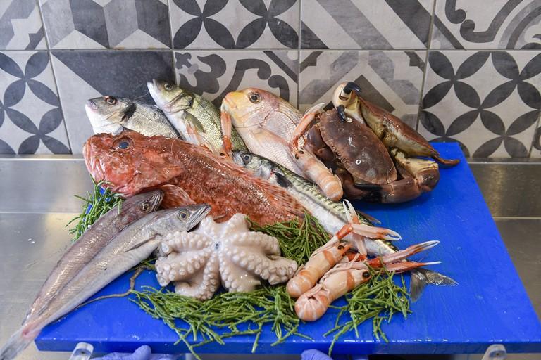 pesce di Bisceglie