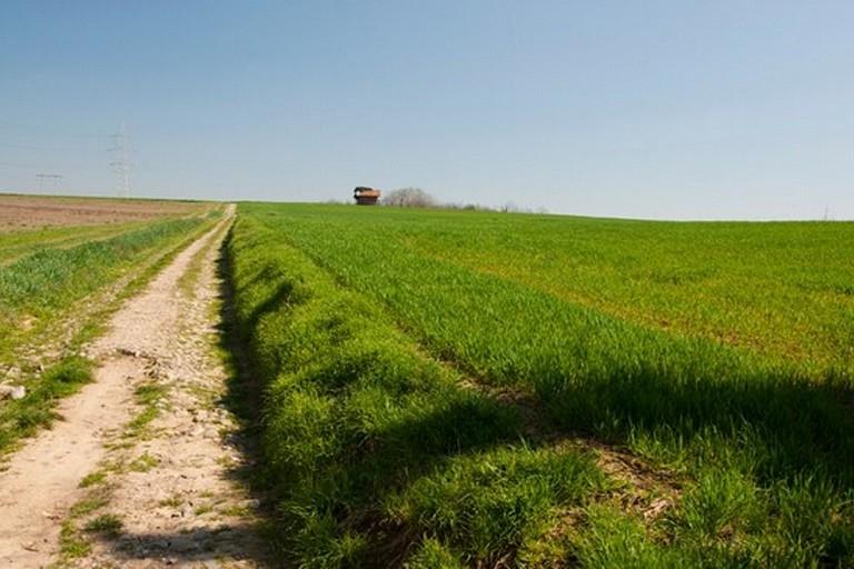 Un sentiero di campagna