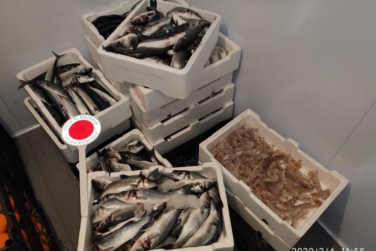 Sequestro al mercato ittico