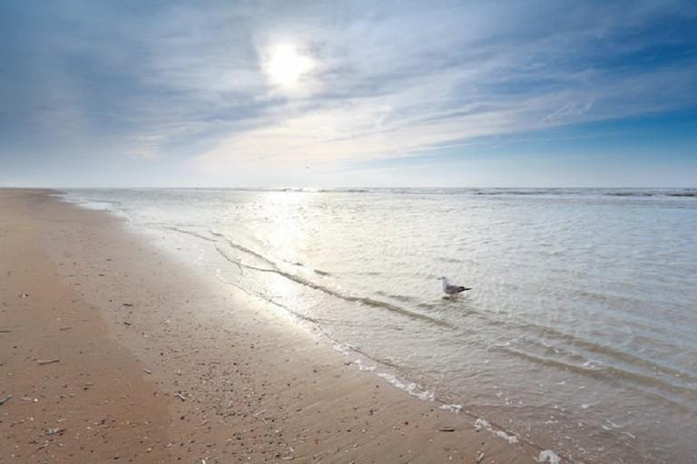 Spiaggia sabbiosa assolata