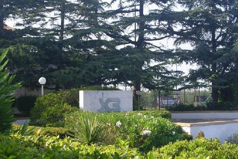 Sporting Club Bisceglie
