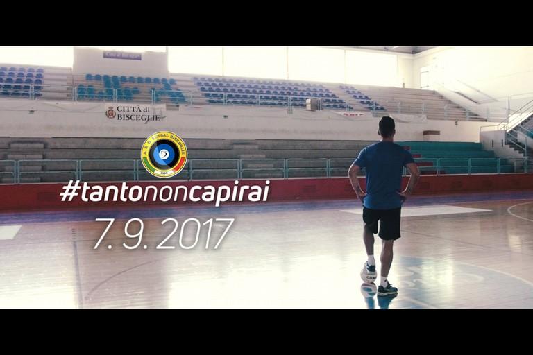 Futsal Bisceglie, scattata la campagna abbonamenti