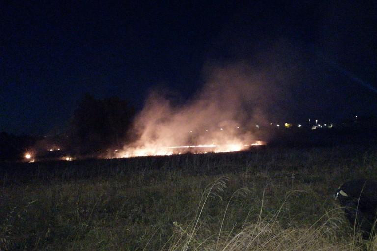 Incendio di sterpaglie in zona Sant'Andrea a Bisceglie